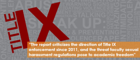 AAUP Publishes Report on 'Uses and Abuses of Title IX'